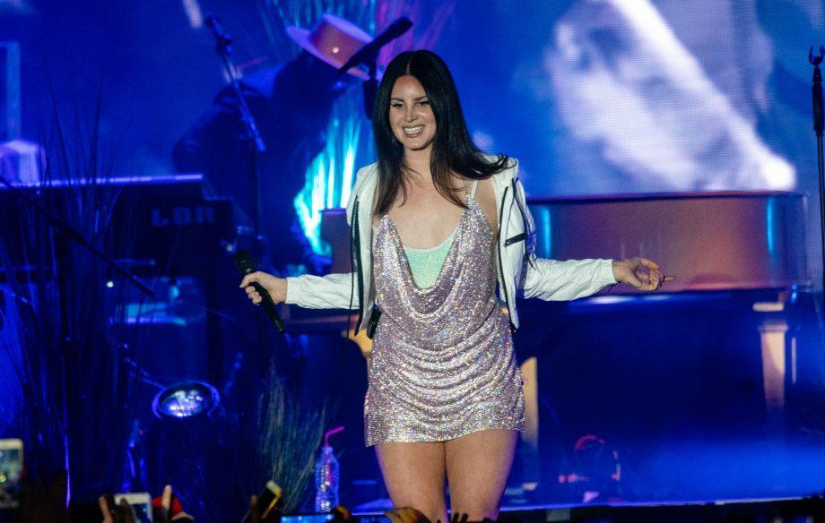 Ultraviolence Lana Del Rey Net Worth