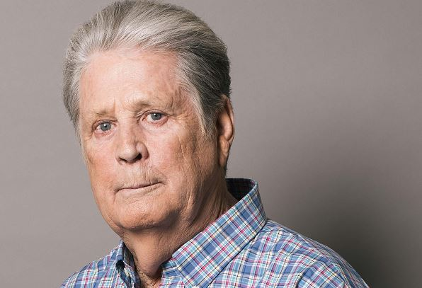 Brian Wilson Net Worth 2020, Biography, Early Life, Education, Career