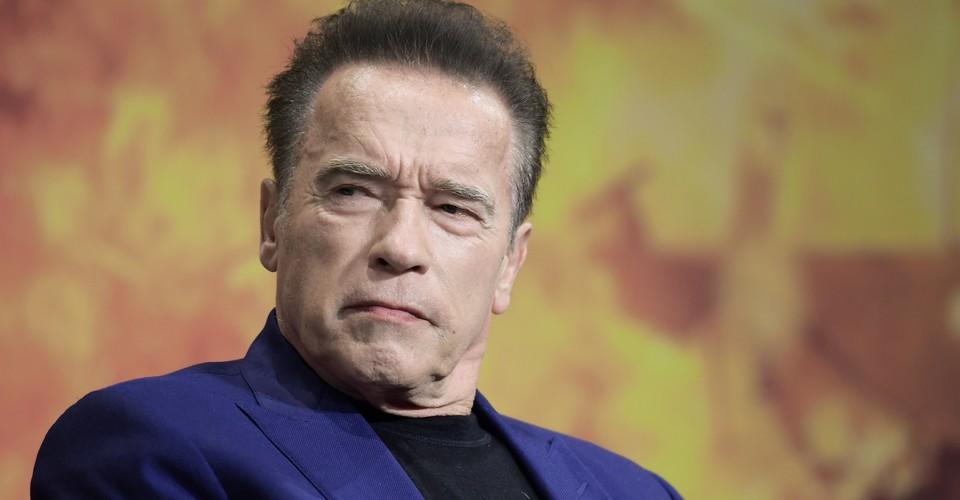 Arnold Schwarzenegger Net Worth 2020, Biography and Marital Life.